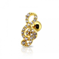 Piercing Orecchio Cartilagine - Helix - Conch - Tragus - Barbell Piercing – Euterpe Gold Plated