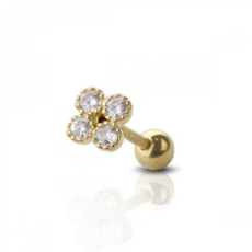 Piercing Orecchio Cartilagine - Helix - Conch - Tragus - Barbell Piercing – Wonderland Gold Plated
